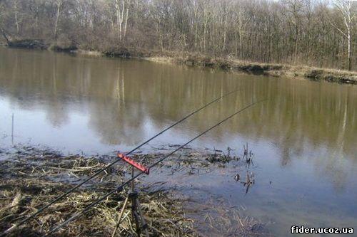 Рыбалка на реке псел